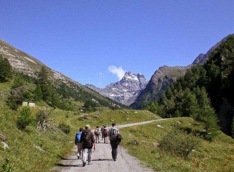 self guided trekking tour alps viso walkers